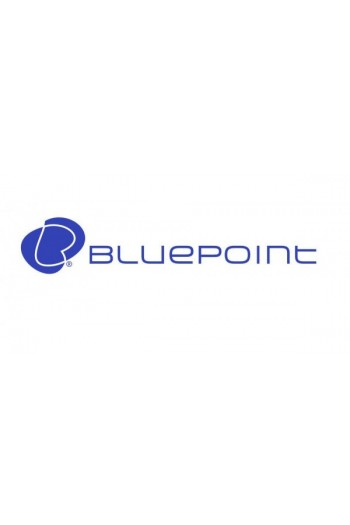 BLUEPOINT